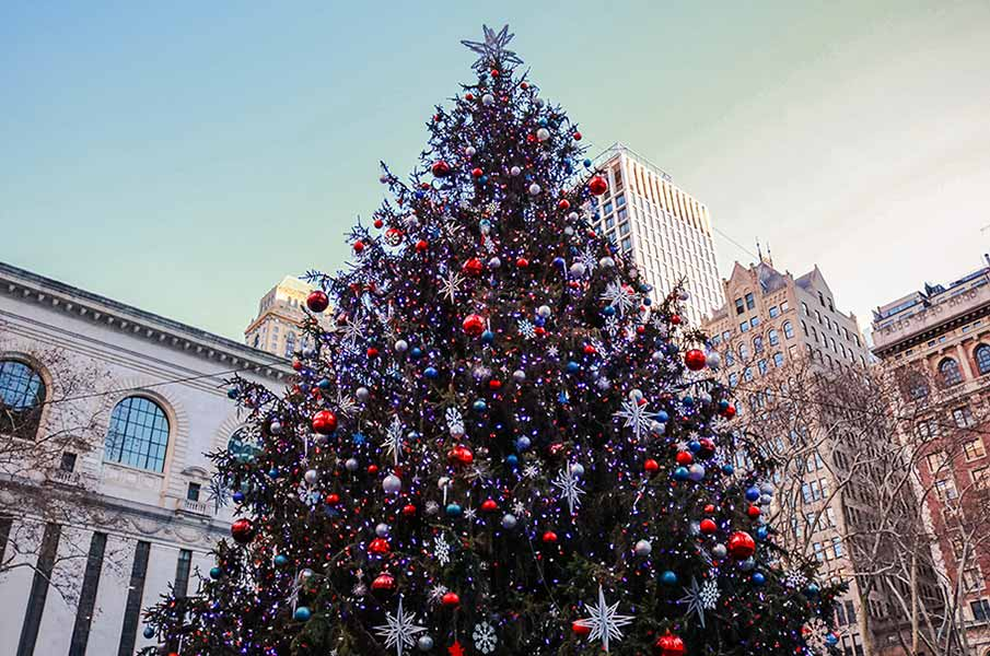 New York Manhattan Winter Bryant Park Snow Christmas Tree
