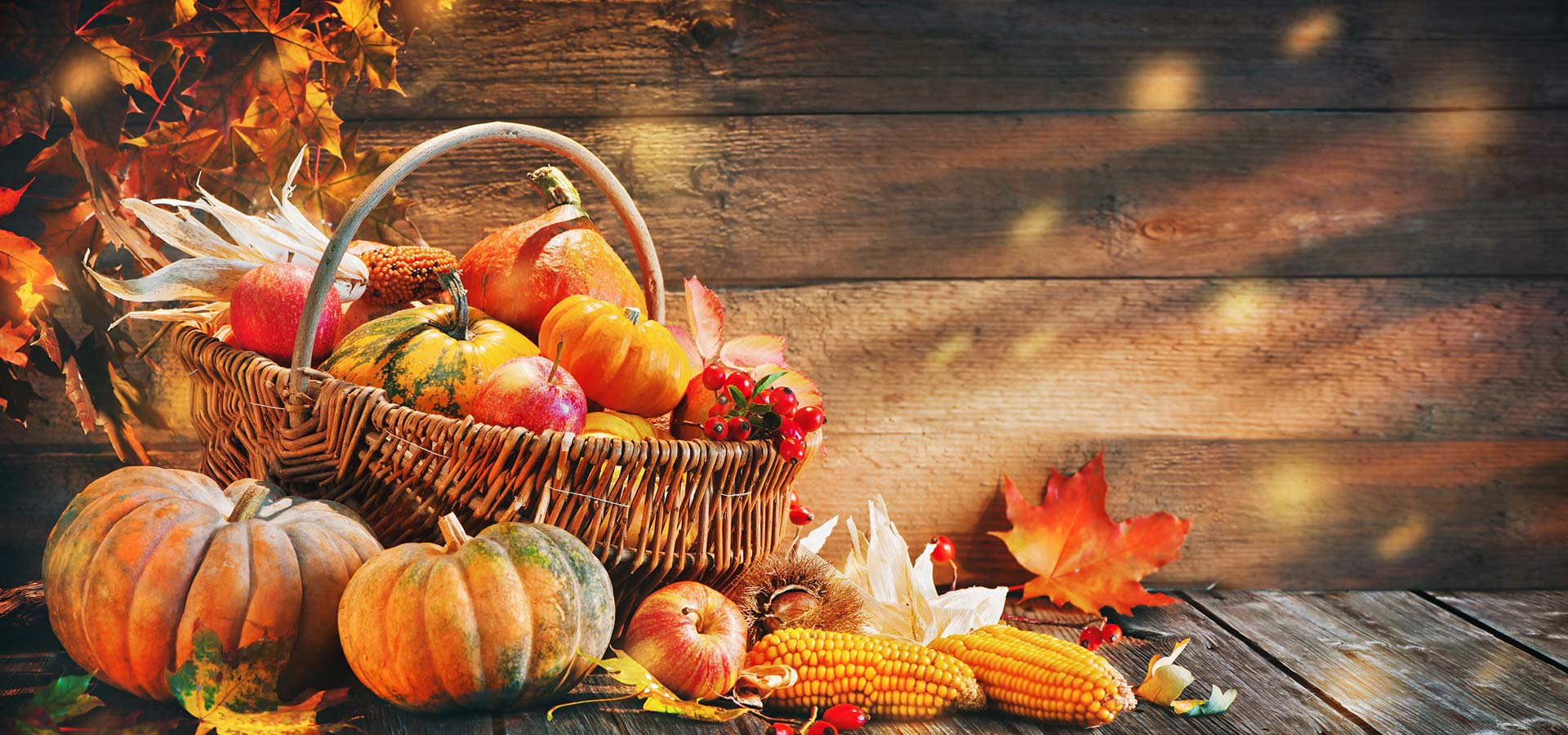 Top Things To Do on Thanksgiving Day