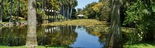 Inland Waterway at Bonnet House